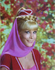 BARBARA EDEN Signed Autographed I DREAM OF JEANNIE 11x14 Photo