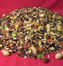 Cockatiel Fruity Mix Food 1KG Fruit Nuts Cockatiel Parakeet Parrot Lovebird Mix