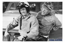 Dumb and Dumber- Large Movie Related Poster - 24x36 Pop Culture