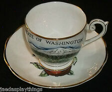Queen Anne China Cup & Saucer Set Washington State Apple FREE US Ship