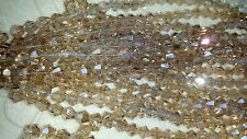 Joblot of 10 strings Silver Champagne 6mm bicone shape Crystal beads wholesale