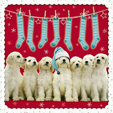 Golden Retriever Christmas Cards Stocking Time 10 Pack Glitter Spot Xmas Cards