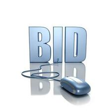 Online Auction Website Bid Buy Business MARKETING PLAN MS Word/Excel NEW!