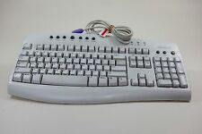 Microsoft Internet Desktop Computer Keyboard Wired PS/2 RT9443 X08-76763 English