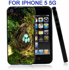 Blue Robin Eggs In Nest For Iphone5 5G Case Cover