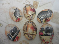 6 Vintage Owls 18x25mm Cabochons,flatback, jewellery,scrapbooking,crafting hobby