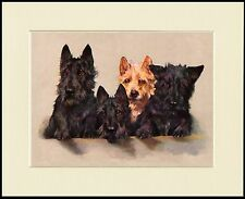 SCOTTISH TERRIER DOGS LOVELY DOG PRINT MOUNTED READY TO FRAME