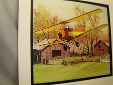 Tiger Moth DH 82 Biplane  1976  Exhibit Color art illustrated Barnstormers