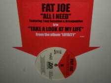 "FAT JOE - ALL I NEED/TAKE A LOOK AT MY LIFE - DJ-12"" Single"