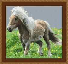 Pony Cross Stitch Kit