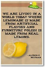Alfred E. Neuman Health Quote - NEW Humorous Quote Poster (hu263)