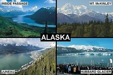 SOUVENIR FRIDGE MAGNET of ALASKA USA