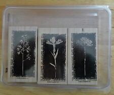 2005 Stampin Up REVERSE PRINTS 3pc RUBBER INK STAMP SET Mother Teresa Emerson
