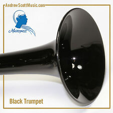New Black and Silver Trumpet in Case - Masterpiece, Wind Instrument