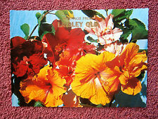 GREETINGS  FROM  LAIDLEY  QUEENSLAND   COLOUR   POSTCARD [429]