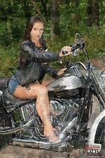 HARLEY DAVIDSON 2014 photo mosaic cm. 30x41 poster with a lot of SEXY pics HD 2