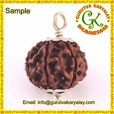 Mantra Siddha Natural Char Mukhi- Four Face Rudraksh 17-19 MM In Silver Pendant