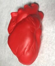 Squishy Red Heart Stress Ball Anatomical Model Anatomy Stressball