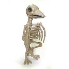 Skeleton Raven Crow Dead Bird Scary Halloween Party Decoration Prop 11""