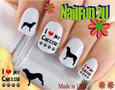 "Rtg Set#120 Dog Breed ""Chesapeake Bay Retriever 2"" WaterSlide Decal Nail Transfr"