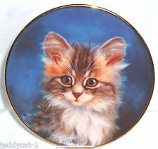 Schirnding katzenporträts 1. Bradex sammelteller = en espera