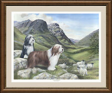 BEARDED COLLIE 'beardie' dog print 'The Old Drovers Road' by Lynn Paterson