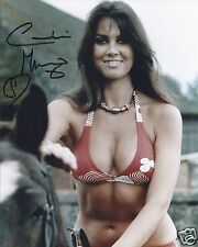 CAROLINE MUNRO SIGNED 007 JAMES BOND 8x10 PHOTOGRAPH 8 - UACC & AFTAL AUTOGRAPH