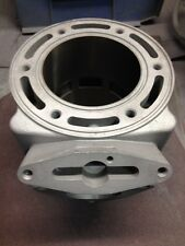 Dragon/RMK 700 Snowmobile Cylinder CAST #3021203-3021340 $100 Core Refund!