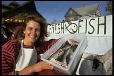714017 Pretty Roadside Fresh Fish Merchant Mahone Bay Nova Scotia Canada A4 Phot