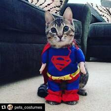 SUPERMAN COSTUME FOR DOGS (OR CATS) FOR SMALL / MEDIUM DOGS