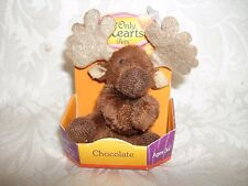 """NEW & RARE! Only Hearts Pets """"CHOCOLATE THE MOOSE BABY""""  Only Hearts Club"""