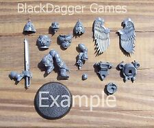 40K Blood Angels  Sanguinary Guard Single Figure Bits