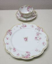 HAVILAND FRANCE      SCHLEIGER 39D     LUNCH SET   - LUNCH PLATE + CUP & SAUCER
