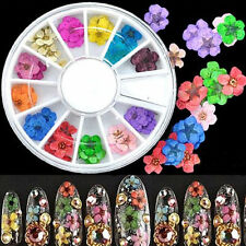 12 Color 3D Dried Flower Acrylic UV Gel Nail Art Design Tip Decoration Wheel DIY