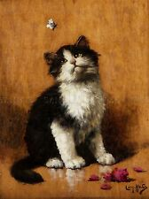 PAINTING ANIMAL PORTRAIT CAT WITH BUTTERFLY HUBER ART PRINT LAH428A