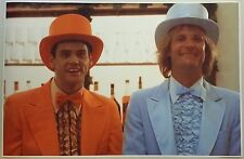 "Dumb and Dumber Tuxedo GIANT WIDE 36"" x 24"" Movie Beer Bar Restaurant Jim Carey"