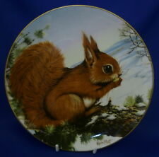 CROWN STAFFORDSHIRE WILDLIFE IN WINTER COLLECTOR PLATE - EARLY WAKING - SQUIRREL