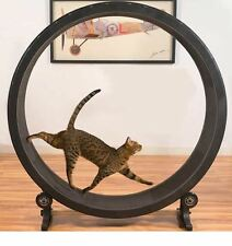 Cat exercice roue robuste léger entraînement machine anti catch mousse surface