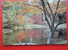 POSTCARD HAMPSHIRE SOUTHAMPTON - EXBURY GARDENS - MAPLES BY THE LAKE IN HOME WOO