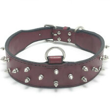 """HAMILTON DT Leather Top D-Ring Spiked Dog Collar, 30"""" x 2"""", Burgundy"""