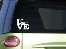 "Scorpion love sticker *H169* 6"" vinyl desert decal"