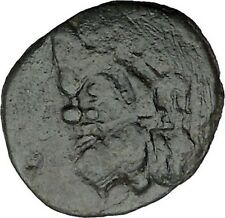 PANTIKAPAION in TAURIC CHERSONESOS 3-2CenBC Pan Cornucopia Greek Coin  i38340