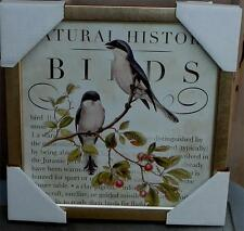 BRAND NEW Natural History Birds Print, Nicely Framed, GORGEOUS PRINT