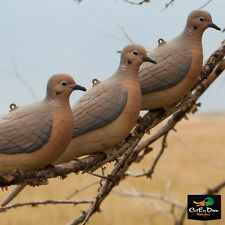 AVERY OUTDOORS GREENHEAD GEAR GHG CLIP-ON MOURNING DOVE DECOYS 6 PACK 1/2 DOZEN