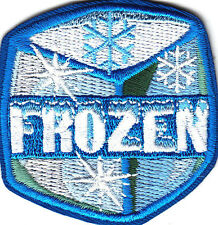 """FROZEN"" ICE CUBE w/SNOWFLAKES- Iron On Embroidered Patch /Snowman, Winter,Games"