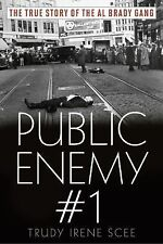 Public Enemy No. 1 by Trudy Irene Scee (2015, Paperback)