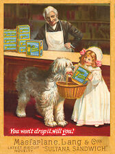 OLD ENGLISH SHEEPDOG VINTAGE BISCUIT ADVERT ON DOG GREETINGS NOTE CARD