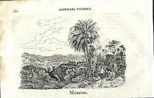 Stampa antica MESSINA panorama Sicilia Cosmorama 1841 Old antique print