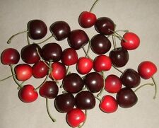 Pottery Barn Faux Red Cherry Cherries Vase Filler New in Box Crafts & Home Decor