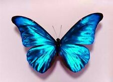 10 Sparkling 3D Wedding Butterflies Turquoise Blue Table Candle Accessories